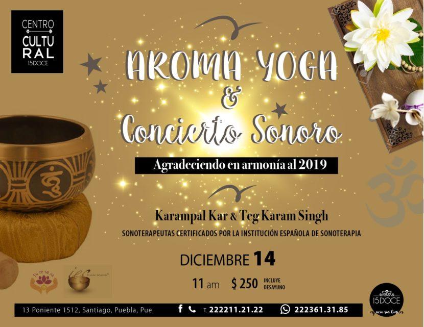 concierto de sonoterapia y yoga_15_doce